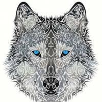 Darkwolf65