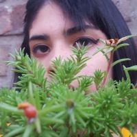 alex_miyo