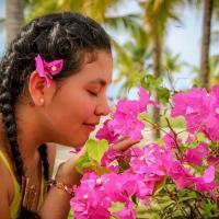 Mallerly Rosado Almache33686