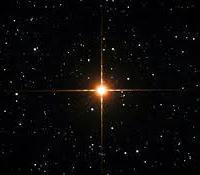 lucida stella