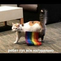 Стекло СЕНСЕЙ ♥️