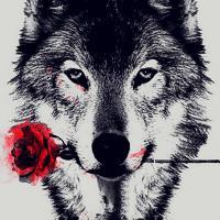el lobo se ha vuelto fundashi