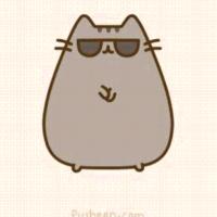 gatito con lentes :v