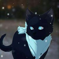 Mika__12
