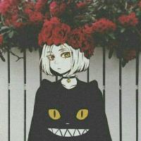 🐱 Kiko 🐱