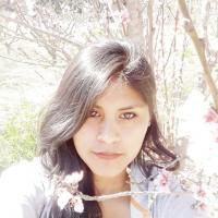 Ailen Marry Colque Cayo