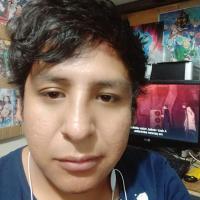 Ruddy Alexander Sanchez Choquecallata35349