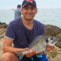 David Ruiz14711