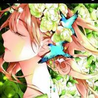 ☆♡Areisha :3♡☆