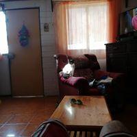 Marcelo Villarroel84272