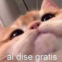 Moises Gonzalez LH