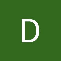 Dani Di