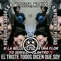 Manuel Pineda25837