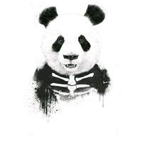 Sr.panda-san