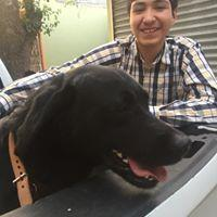 Luis Fernando Torres Gaytan1219