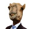 Camelo Gus
