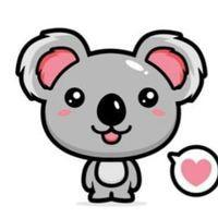 Koala San