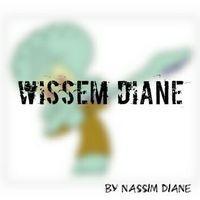 Wissem Diane