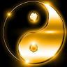 Ying Yang41788