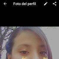 Andrea Nava62091