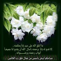 Faiza Fa