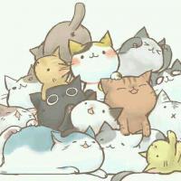 kitty1418