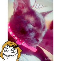 Nikky ♥
