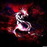 INFINITE-DRAGONドラゴン