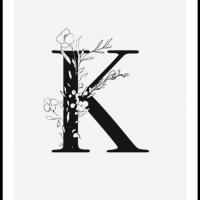 Kelly KM