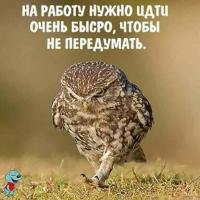 Чаёкtян
