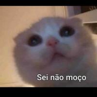 Laura Soares65771