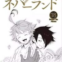 ray/yakusoku no neverland 😍