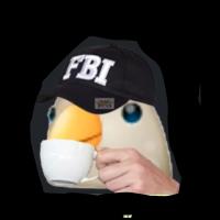 #FBIcurtiuisso