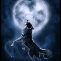 wolfspirits