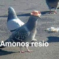 Gabo_jk