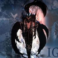 Igris_Leveling