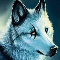 Dark Wolf Lord