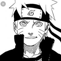 Naruto the Shinobi