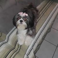 Jordania Sousa