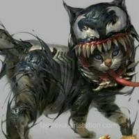 Cat-suicide