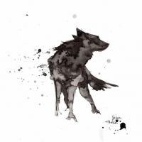 Wolfy Black