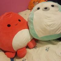 Meliissa Li