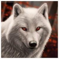 DEVIL-Wolf