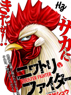 Rooster Fighter [Hz]