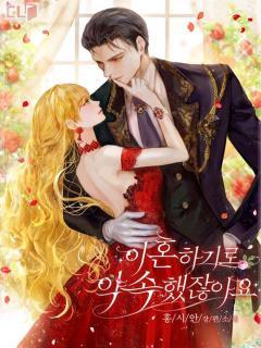 You Promised To Divorce Me (Novel)