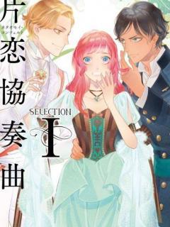 The Selection (novela)