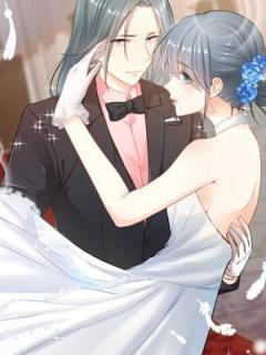 Hidden Marriage (Manhua)