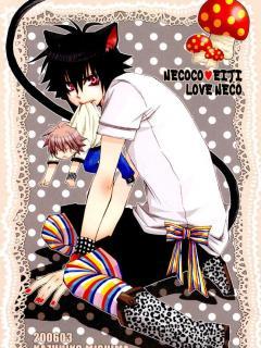 Любовь кошки | Love Neco