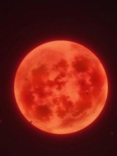 El Asesino De La Luna Carmesí Reencarna (Novela)