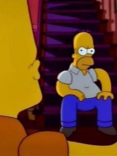 !! 11 Homer